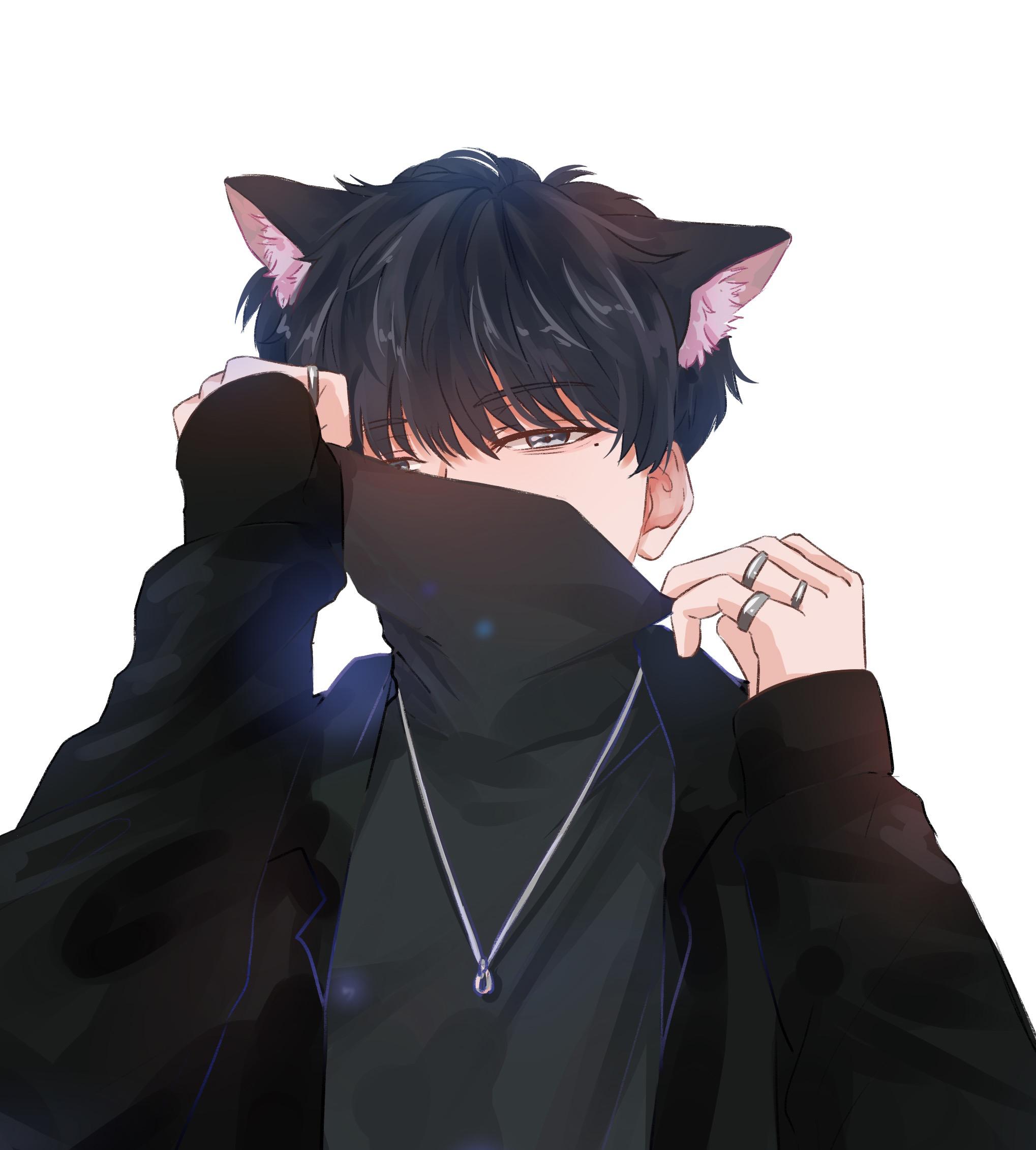 王者荣耀九天狐『 B+』