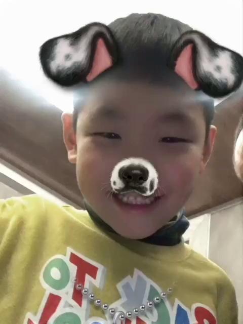 山西太原超群犬qq空