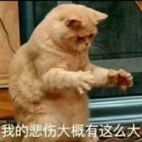 '浮梦 (129五开)