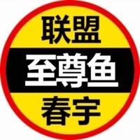英雄联盟-春宇(至尊鱼)