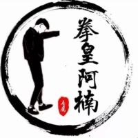 拳皇97-阿楠(夜枫)