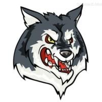 大灰狼🐺刺激战场